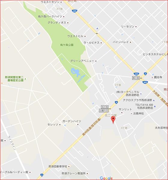 グーグル地図